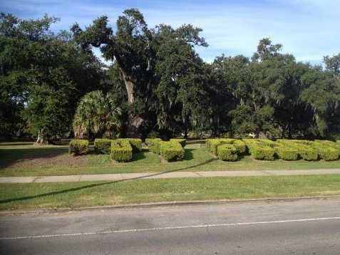 """October 2013: A City Park worker accidentally cut down nearly two letters from the historic bushes that spelled out """"City Park."""" The accident outraged residents and the bushes were eventually replaced. Read initial report"""