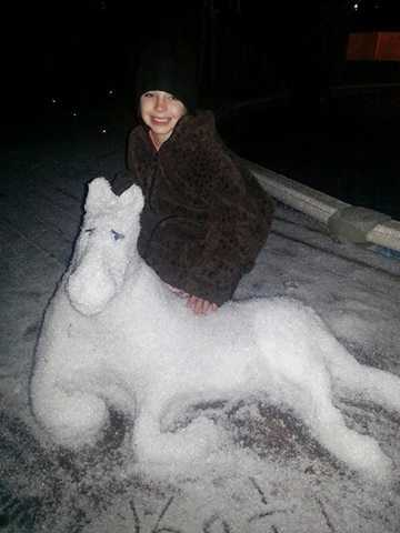 From: KatieTitle: Snowhorse