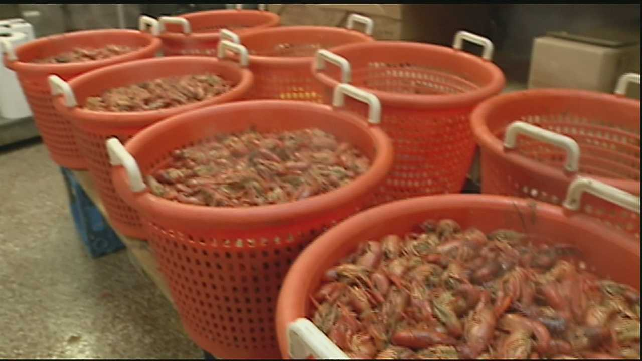 Friday is the first Friday of Lent, and that means many folks will be trying to pickup crawfish for their meals, but they might be surprised about the cost because it's not as available this year.