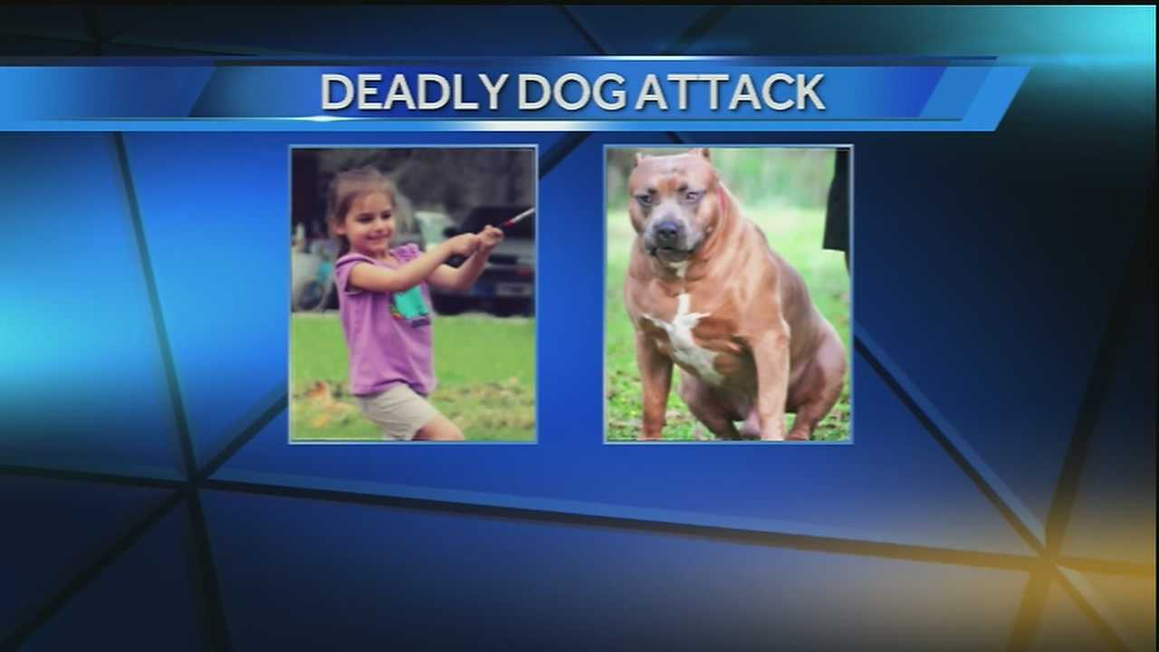 The dog responsible for killing a 4-year-old Houma girl and injuring the child's mother is being tested for rabies, officials said.
