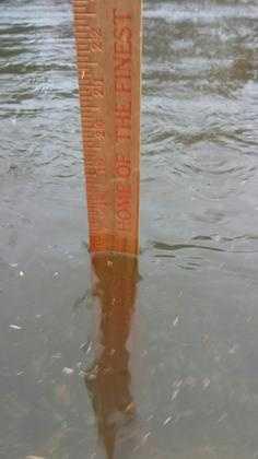 16 inches in Dutchtown.