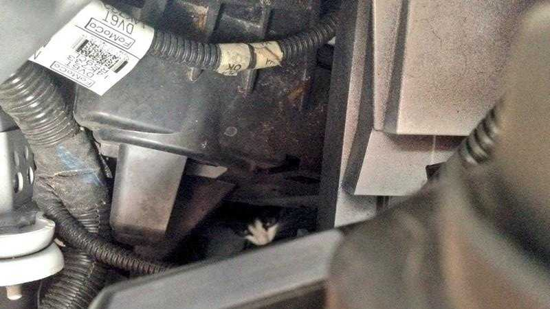 """It started about 3 p.m. when WDSU reporter Andy Cunningham and his photographer discovered a """"meow"""" coming from the engine."""