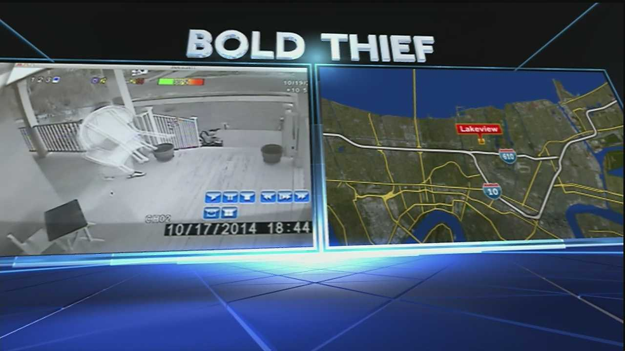 A brazen thief has put some neighbors in Lakeview on alert this weekend.