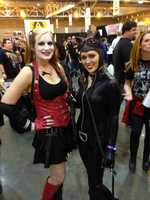Harley Quinn and Catwoman from the Batman comics.