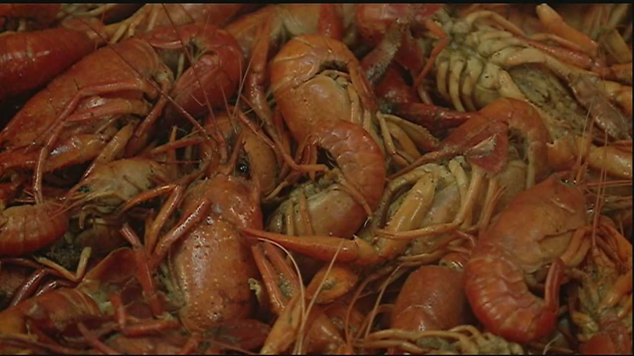 Fluctuating hot and cold weather is having an impact on the size, availability and price of crawfish.