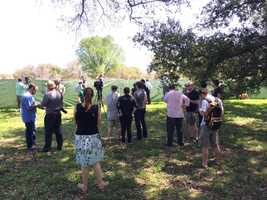 A crowd began gathering at the tree, which included members from environmental groups and protest supporters.