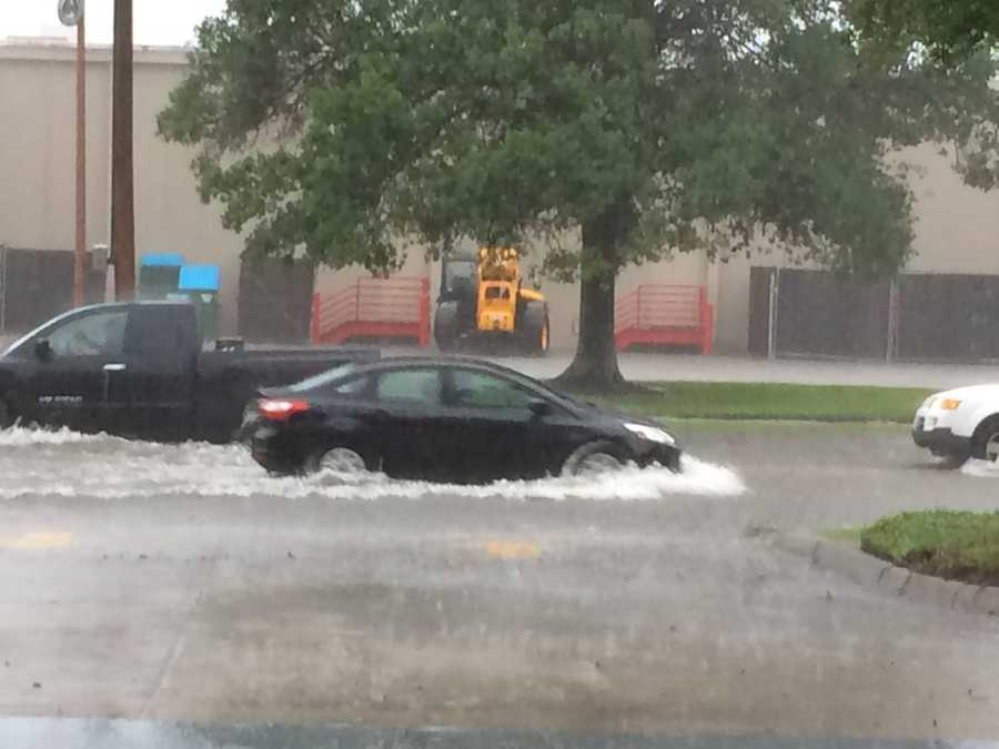 Submitted by: Jennifer PorteraLocation: Clearview and Mounes