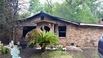 Firefighters in St. Tammany Parish rescued a dog from a home that caught fire on Wednesday in Lacombe.