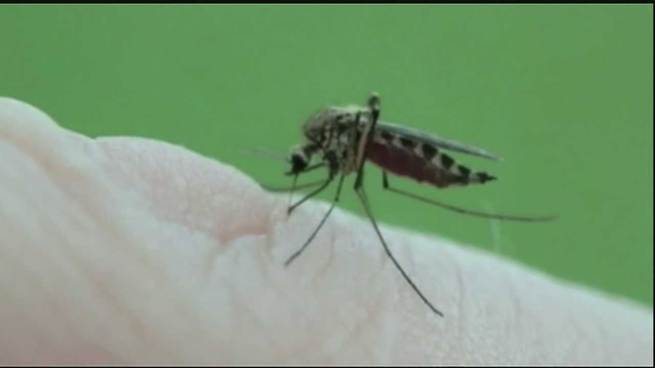 While people were out enjoying the Labor Day holiday, many residents on the west bank of Orleans Parish were taking precautions against mosquitoes.