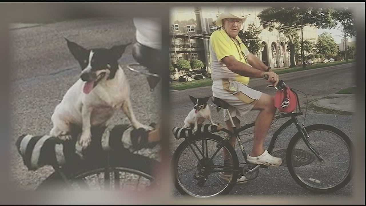 A Vietnam Veteran spent his Veterans Day and all of Thursday searching for his stolen service dog. He said someone snatched his dog when he left her sitting outside a Claiborne Avenue grocery store.