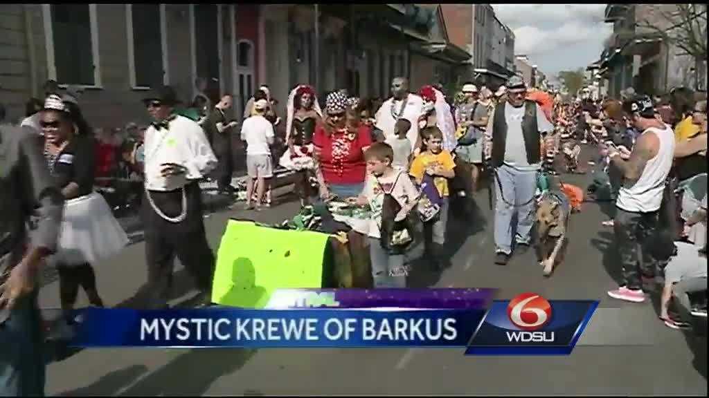 Mystic Krewe of Barkus
