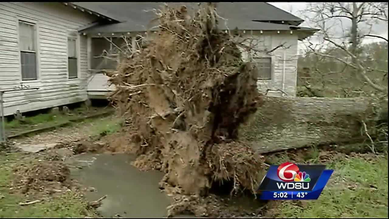 While much of the Northshore escaped major storm damage Thursday night, the Village of Tangipahoa took one on the chin.
