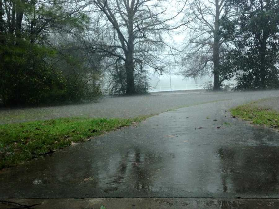 Courtesy: Mallorie Elizabeth Pittman in Bogalusa