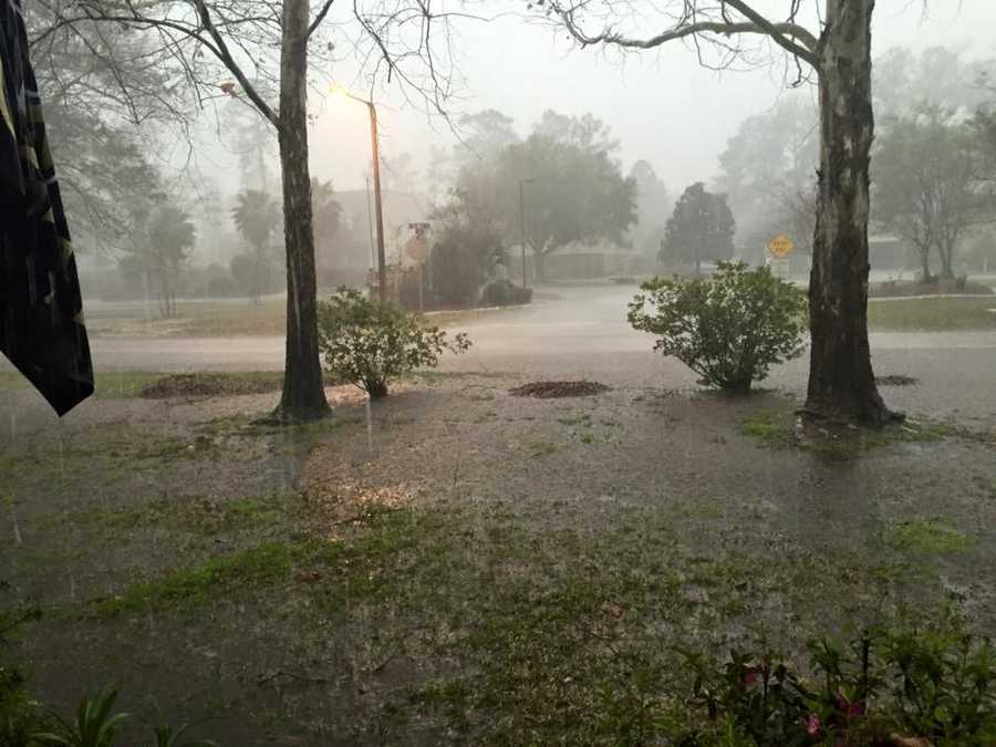 Courtesy: Pam Barbee Groue in Mandeville