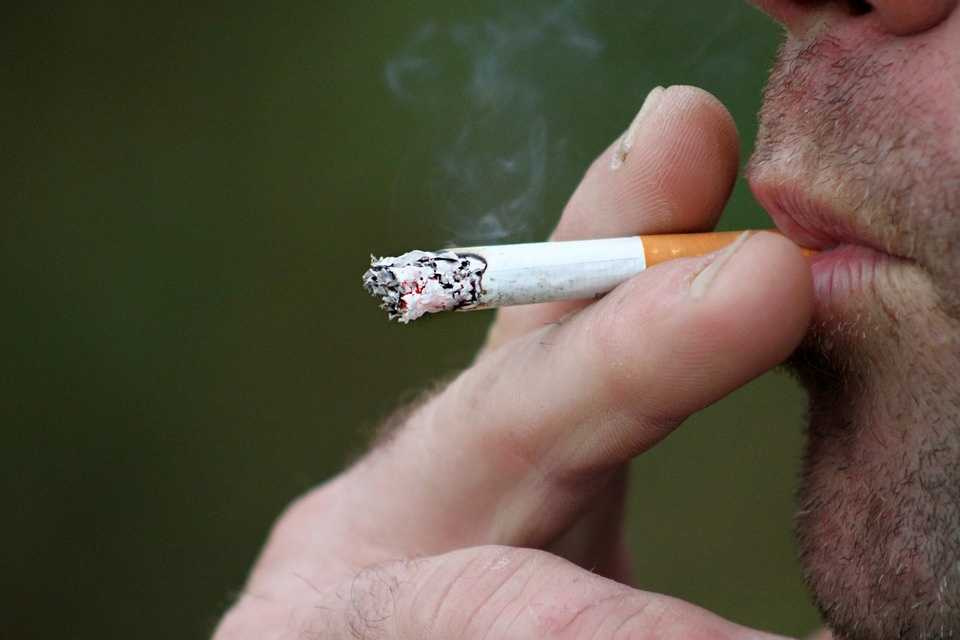 Buy cigarettes Camel cartons UK