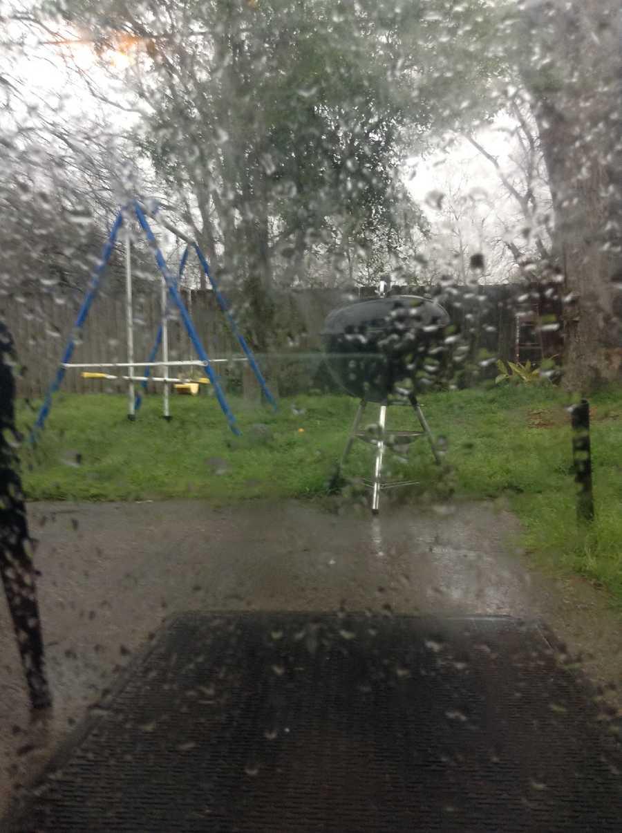 Raining in Backyard
