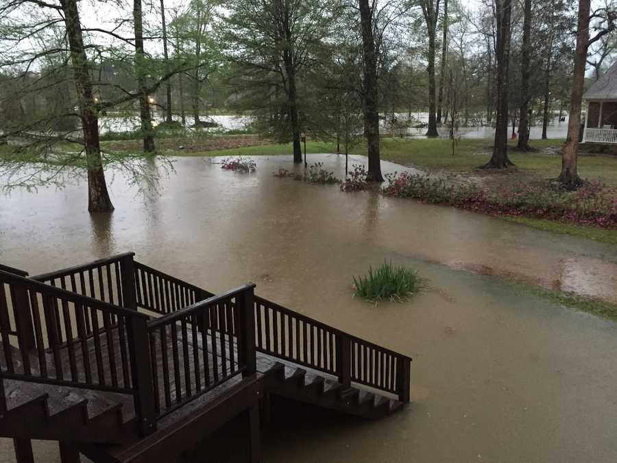 View from our front porch this morning.