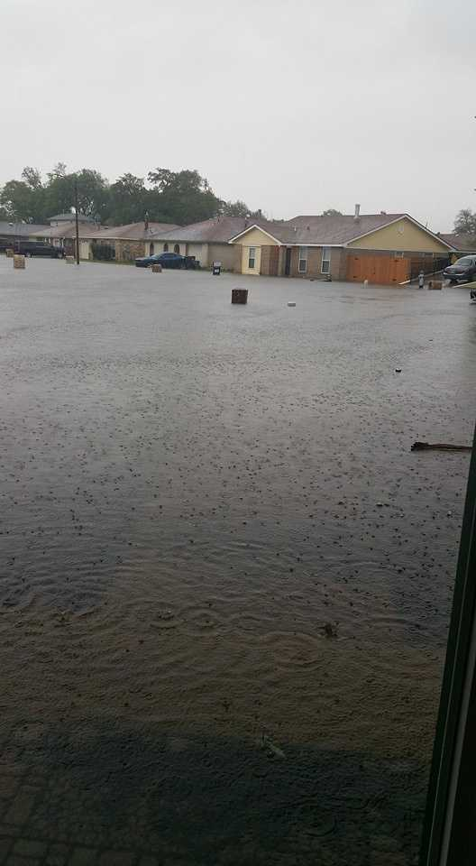 Courtesy:Donmiquea MrsSmith Turner at Bullard in New Orleans East