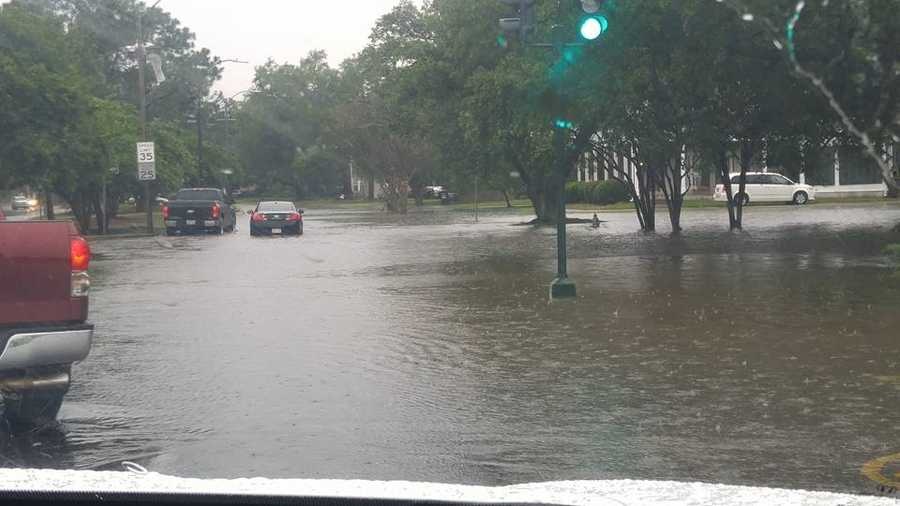 Courtesy: Cori Caimi at Leon C Simon and Wisner Boulevard