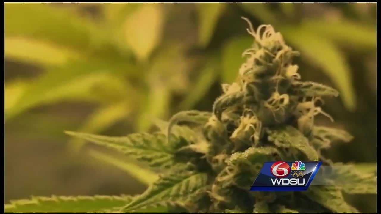 Gov. John Bel Edwards has signed a bill to kick-start and expand Louisiana's medical marijuana program, which has been slow to begin because of regulatory hurdles.
