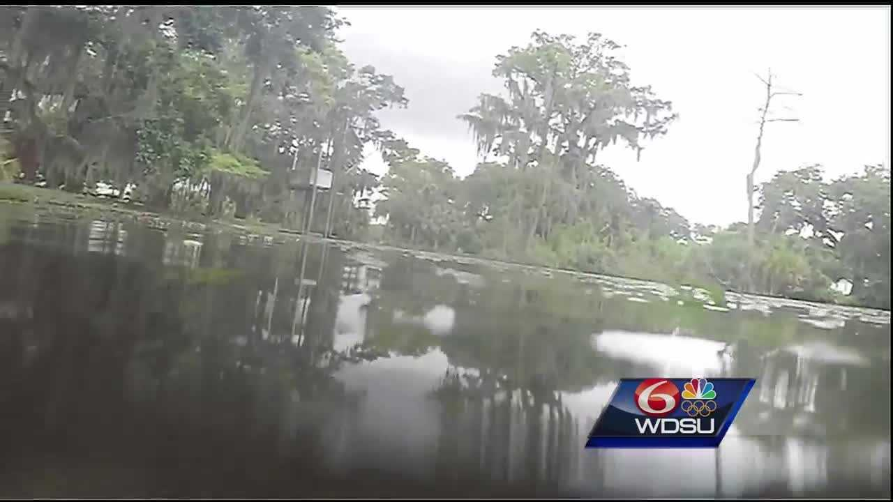Wildlife officials said it should be no surprise that alligators can be found in areas of New Orleans like City Park. Residents should be aware of their surroundings and follow safety measures in place.