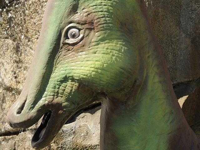 Do you know where this dinosaur lives?