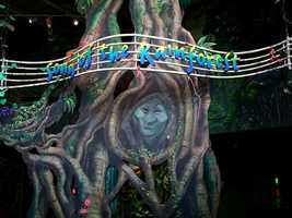 """Those unmistakable eyes belong to Grandmother Willow. The Pocahontas star hosts the """"Song of the Rainforest"""" experience, a 3D sound picture of a rainforest habitat at the Animal Kingdom."""