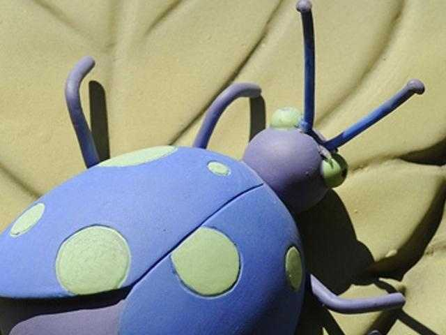 Where at Walt Disney World can you find this creepy crawler?