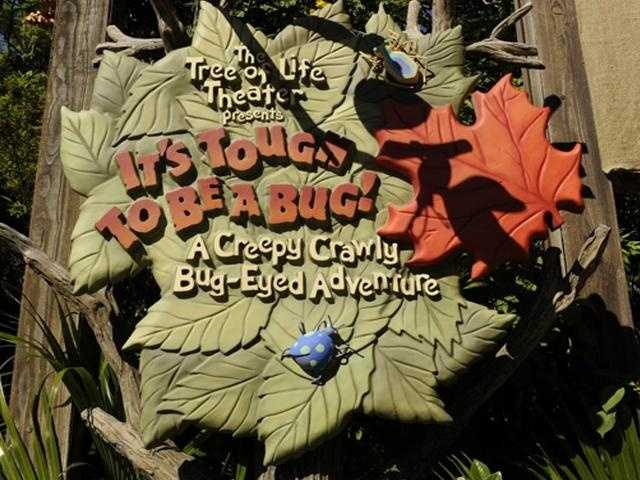 """It's part of the entrance to the """"It's Tough to be a Bug!"""" attraction at Disney's Animal Kingdom theme park, of course!"""
