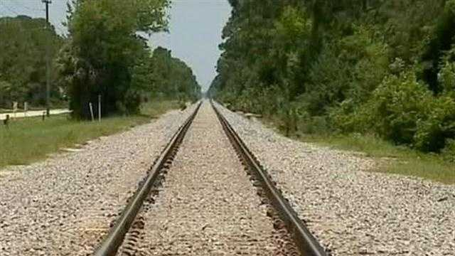 Man hit by train, dies