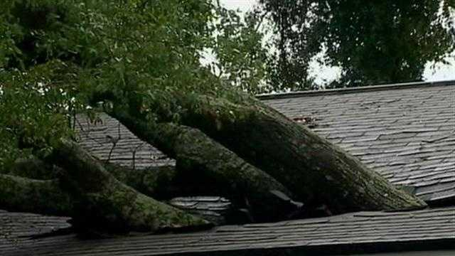 An afternoon storm roars through Central Florida, knocking down trees and power lines.