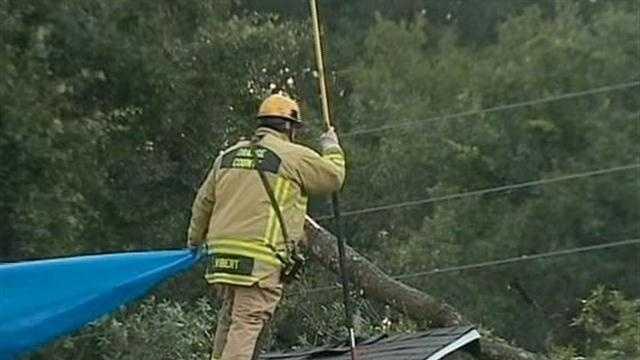 Tree falls onto home