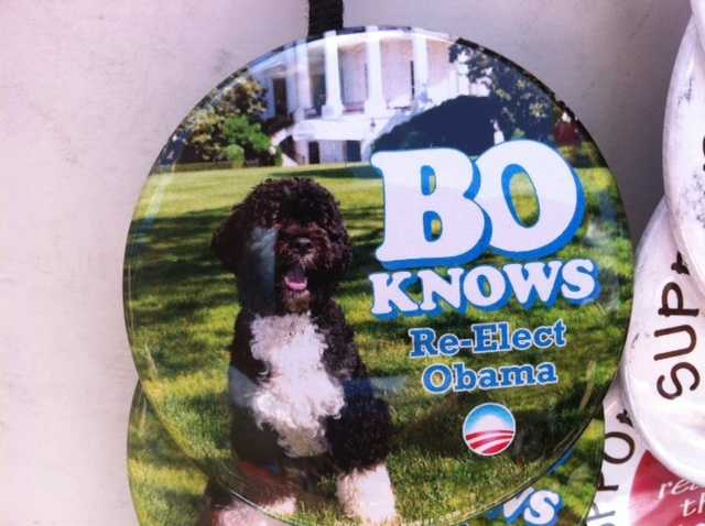 Even the president's dog is getting in on the reelection campaign.  A vendor is selling the buttons for $10.