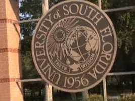 4. University of South Florida