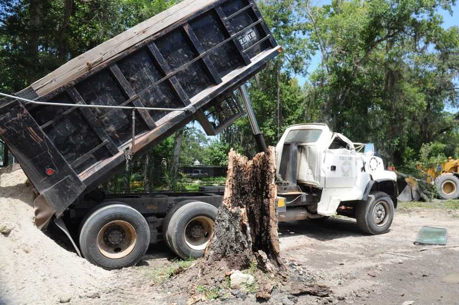 A city worker in Daytona Beach became trapped inside of his dump truck after a large oak tree landed on the vehicle's roof Tuesday afternoon.