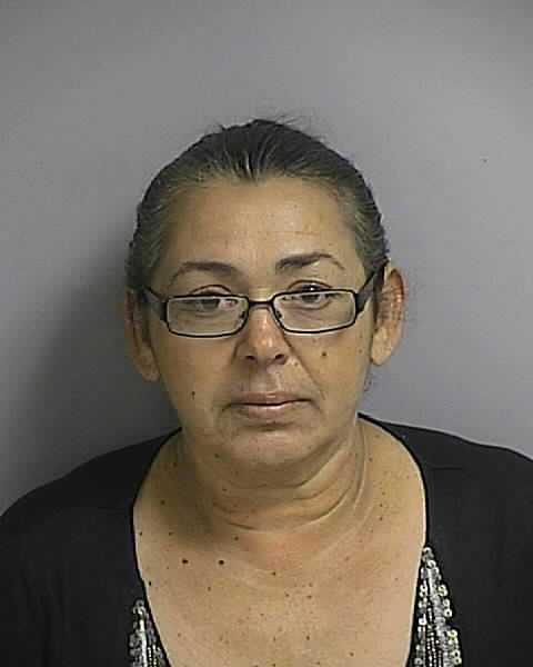 Maria Lopez-Arzon: Knowingly driving with a suspended license.