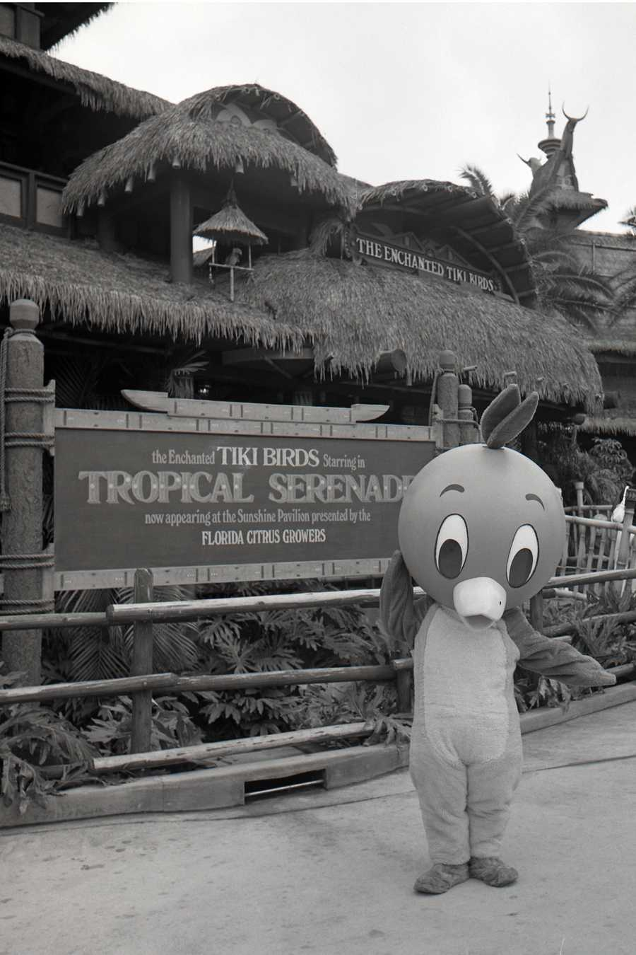 The Enchanted Tiki Birds in the 1970s.