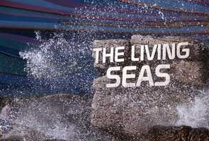 The original Living Seas pavilion opened in 1986 and is home to a coral reef environment that holds 5.7 million gallons of seawater.  The area is now home to The Seas with Nemo & Friends attraction.