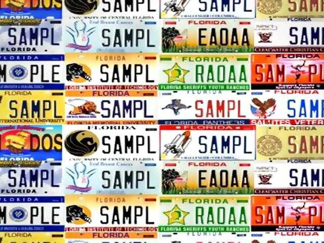 Check out all the license plates for the state of Florida.