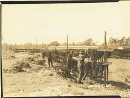 1930 - Drying Spanish moss