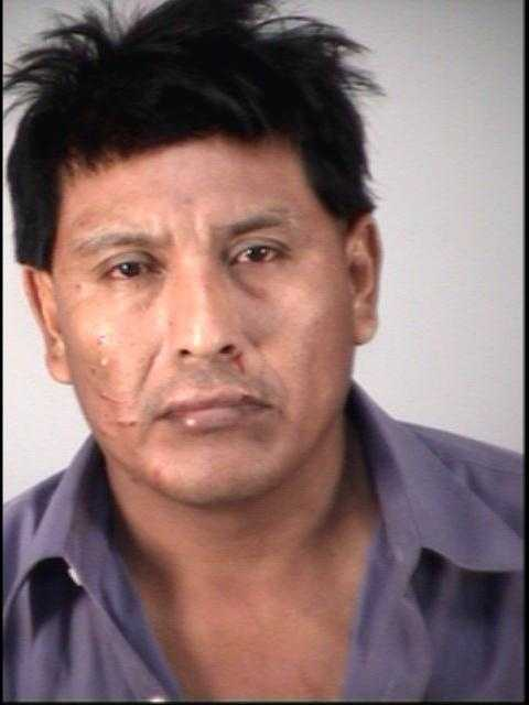 JAVIER AMATES-RODRIGUEZ: BATTERY DOMESTIC VIOLENCE