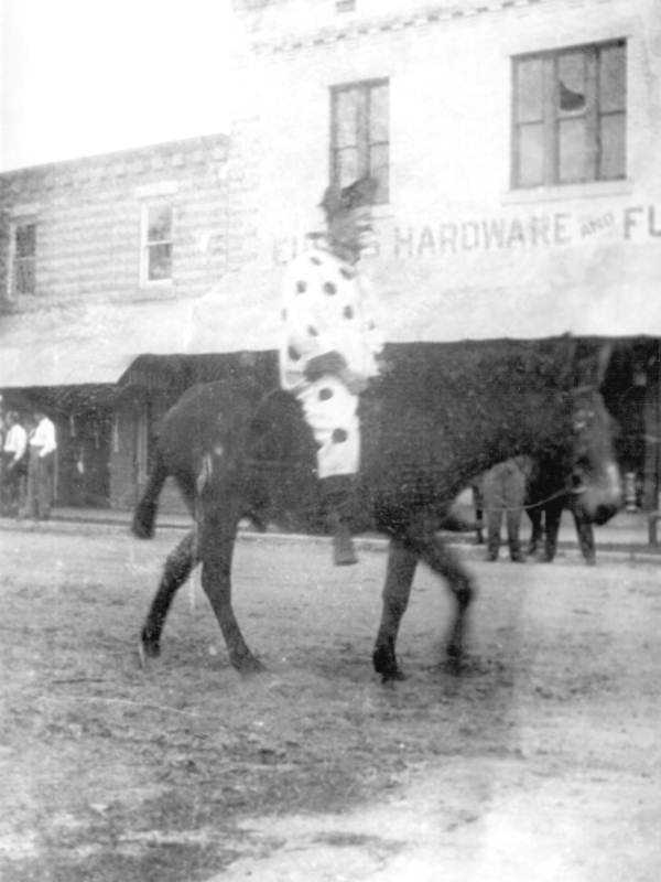 To celebrate Washington's birthday, the city of Eustis held a parade in the 1890s and this clown was captured riding a mule down Bay Street.