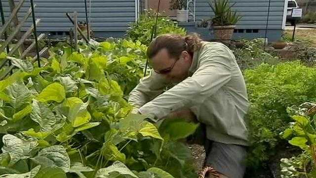 The city of Orlando has ordered a College Park man to get rid of the vegetable garden in his front yard, calling it a code violation.