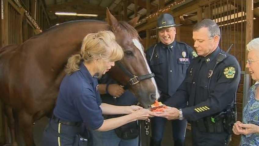 Horse Retires1