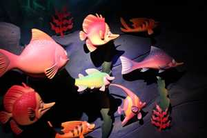 "More than 70 percent, 128 to be exact, of the characters are featured in the ""Under the Sea"" scene."