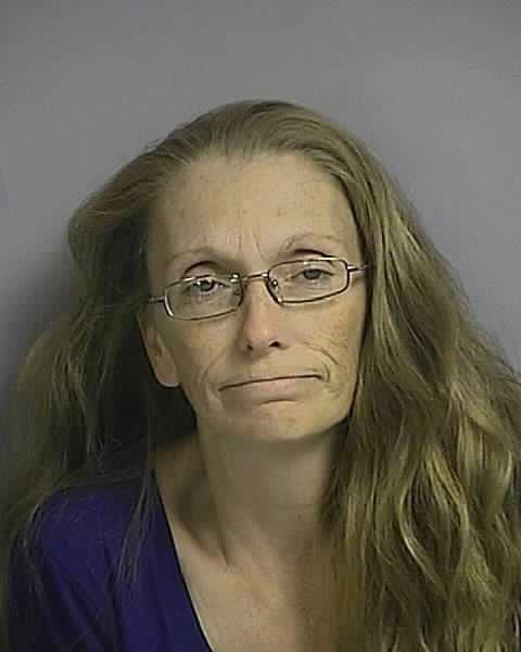 Michelle Lynn Neal: DUI alcohol or drugs 1st offense, distribution of opium, possession of a controlled substance