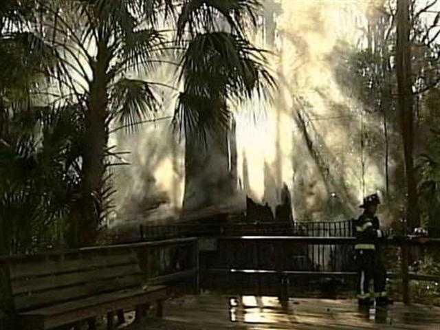 2. Arson ruled out in 'The Senator' fire - An investigator with the Florida Department of Agriculture ruled out arson in the fire which destroyed a historic tree known as The Senator. (Read story)