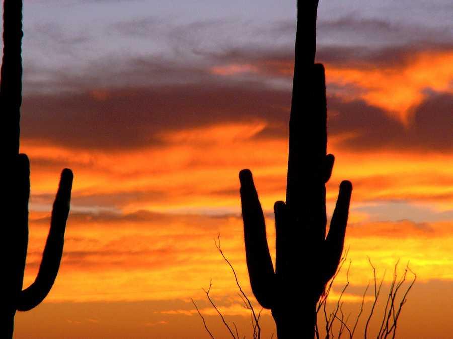 3. Phoenix, Arizona (Ranked 2 in 2012)