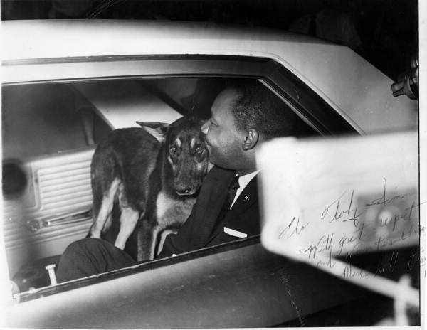 Martin Luther King, Jr., in the car with a dog in St. Augustine, Fla., in 1964.