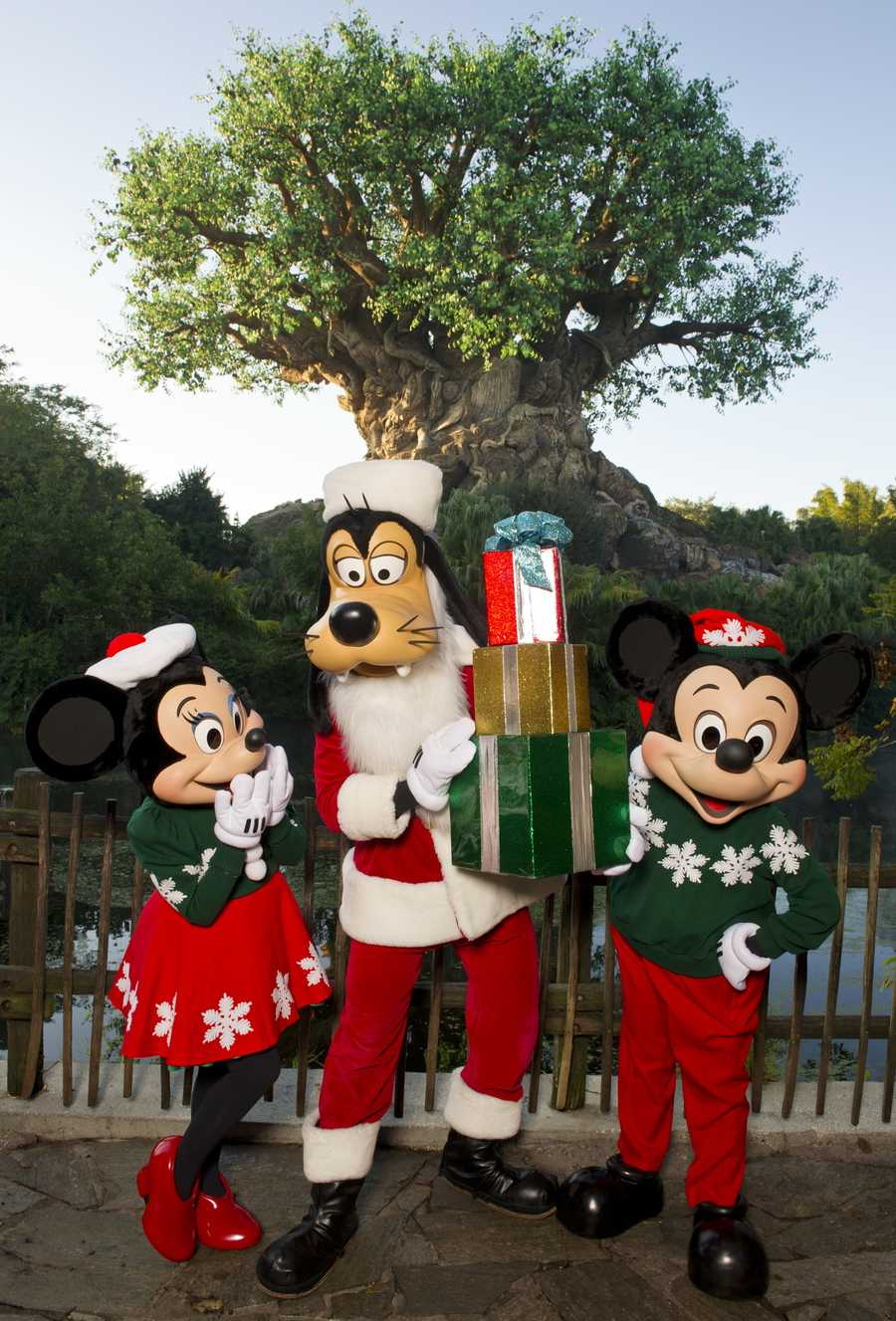 Minnie has several holiday outfits.  Here she is in her holiday sweater and skirt ensemble with Mickey and Goofy at Animal Kingdom.